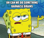 uh can we do something barnacle brains