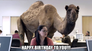 Mike, Mike, Mike .... Guess what day it is??